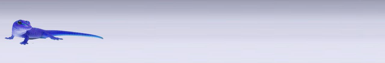 gecko - slider-products1-1280x210 blau neu